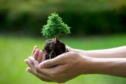 Báo chí tiên phong bảo vệ môi trường