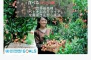 """Vải thiều Việt Nam được nhiều quốc gia """"mê tít"""": Xuất khẩu hàng nghìn tấn, giá bán có thể lên tới 550k/kg"""