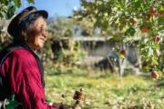 Xu hướng di cư ngược ở Trung Quốc: Bỏ phố về quê và kiếm hàng chục triệu đô mỗi tháng nhờ livestream bán nông sản