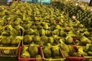 Nhật Bản siết kiểm tra đối với sầu riêng Việt Nam