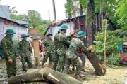 Kiện toàn Ban chỉ đạo quốc gia về phòng, chống thiên tai