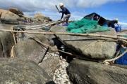 Nhiều hộ gia đình nuôi cá lồng bè trắng tay sau bão