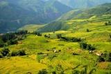 Việt Nam đang chi cho bảo vệ môi trường lớn hơn thu