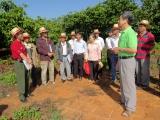 NESCAFÉ Plan tập huấn lập kế hoạch sản xuất kinh doanh cho nông dân sản xuất cà phê