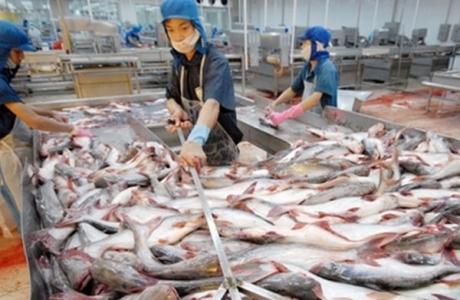 Chuyển từ nghề cá tự nhiên sang phát triển bền vững