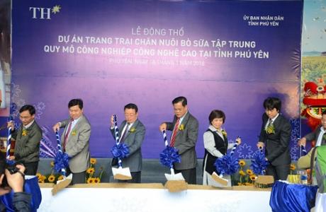 Tập đoàn TH phát triển đàn bò sữa 20.000 con tại Phú Yên
