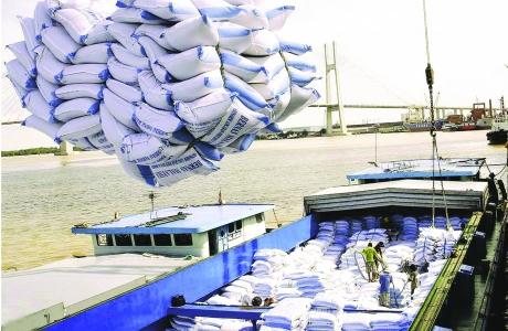 Những tín hiệu tích cực với xuất khẩu gạo