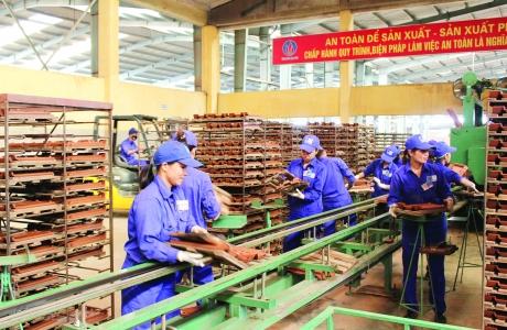 Những mảng màu sáng, tối của doanh nghiệp Việt