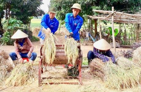 Ấm tình mùa gặt