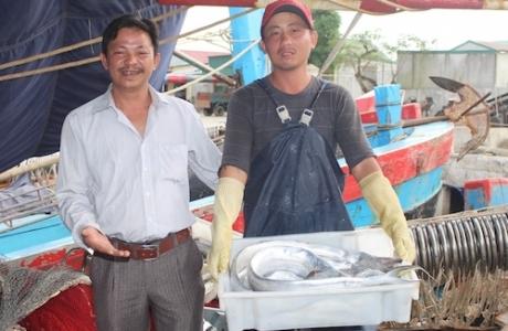 8 tiếng bắt đàn cá 17 tấn ngoài khơi của ngư dân Nghệ An