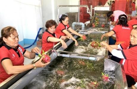 """Mở đường """"xuất ngoại"""" cho nông sản Việt"""