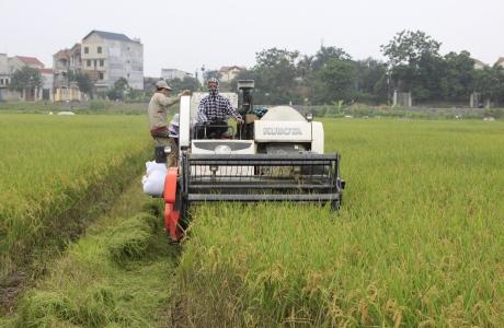 Doanh nghiệp Trung Quốc muốn xin miễn thuế nhập khẩu đối với nông sản Mỹ