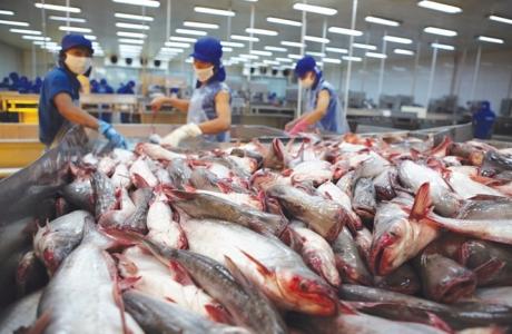 Trung Quốc điều chỉnh nhiều chính sách biên mậu với hàng thủy sản