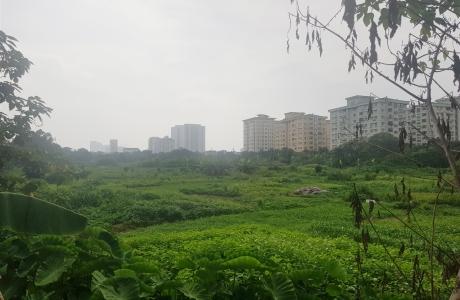 Hà Nội chấp thuận dự án
