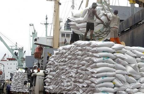 Giá gạo Thái cao ngất & cơ hội cho gạo Việt