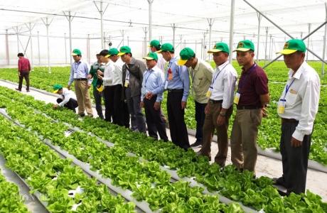 Đoàn nông dân xuất sắc thăm