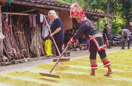 Vùng cao Quảng Ninh thu hút du khách trải nghiệm trong mùa thu