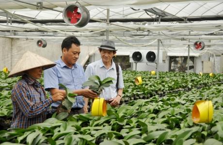 Nông nghiệp công nghệ cao thiếu nhân lực chất lượng