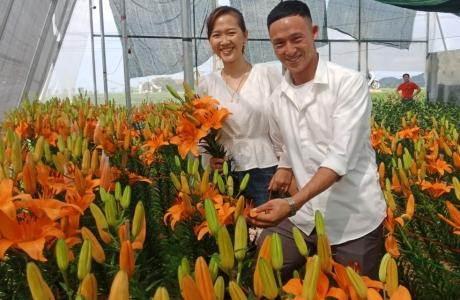 """Chàng trai 9X Hà Tĩnh """"thử nghiệm"""" trồng hoa, thu về cả trăm triệu đồng dịp Tết"""