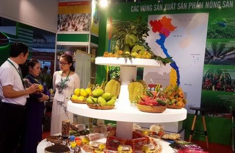 Thương hiệu rau quả Việt cần nhiều tiêu chuẩn để cạnh tranh ở EU