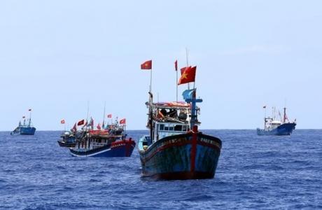 Hội Nghề cá Việt Nam kịch liệt phản đối hành động phi lý của Trung Quốc