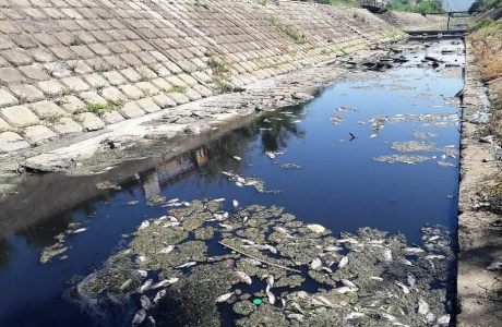 Đề nghị xử phạt vi phạm hành chính trong lĩnh vực tài nguyên nước và khoáng sản