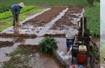 Cần một kịch bản quy hoạch mới cho sự phát triển của nông thôn Việt