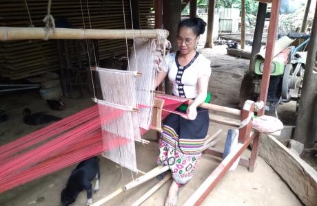 """Ngân hàng CSXH huyện Quế Phong: """"Bà đỡ của người dân nghèo"""""""
