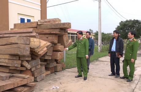 Quảng Bình: Chồng giám đốc công ty TNHH khai thác, phá rừng với hơn 30m3 gỗ quý hiếm