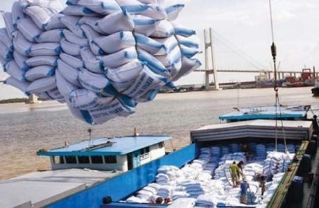 Phân bổ hạn ngạch thuế quan nhập khẩu gạo trong khuôn khổ Hiệp định Việt Nam – EAEU