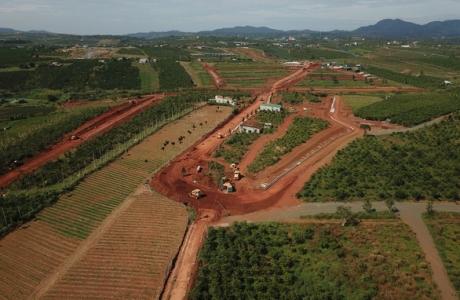 Chủ tịch tỉnh Lâm Đồng giao công an điều tra việc phá nát thủ phủ chè Bảo Lộc