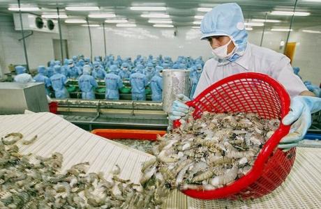 Ngành thủy sản năm 2021 và độ nhạy với dịch Covid-19