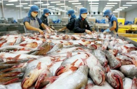 Campuchia ngừng nhập khẩu 4 loại cá da trơn từ Việt Nam
