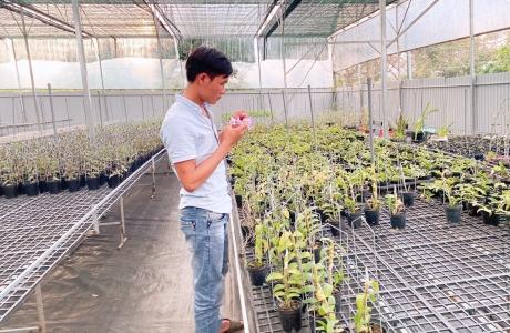 Nguyễn Quốc Trường: chơi hoa lan đột biến là phải có kinh nghiệm và bản lĩnh