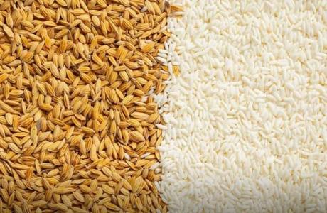 Giá gạo Việt Nam và Ấn Độ tuần này tăng mạnh