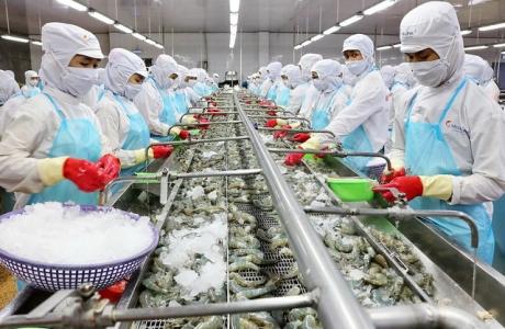 Phát triển thủy sản thành ngành kinh tế quan trọng của quốc gia