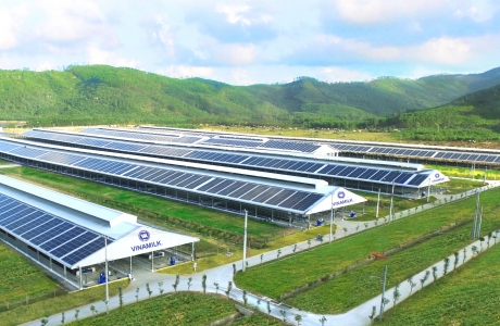 Vinamilk đẩy mạnh sử dụng nguồn năng lượng mặt trời
