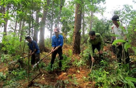Tăng cường bảo vệ, phát triển rừng ngay từ đầu năm 2021