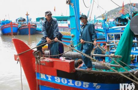 Điều chỉnh cục bộ khu bến cảng Cà Ná (Ninh Thuận)