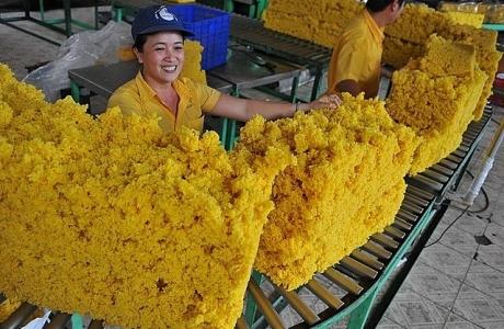Xuất khẩu cao su sang Trung Quốc tăng mạnh, đạt 323.597 tấn
