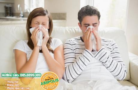 Giải pháp cho người viêm xoang, viêm mũi dị ứng, hắt hơi liên tục