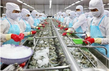 Doanh nghiệp xuất khẩu thủy sản cần chủ động, có biện pháp ứng phó phù hợp