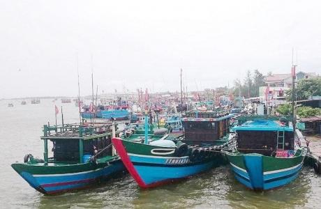 Đề xuất hỗ trợ kinh phí mua bảo hiểm cho tàu cá, thuyền viên
