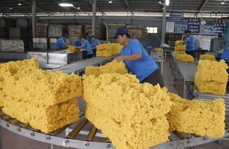 Xuất khẩu cao su tăng cao trong 5 tháng