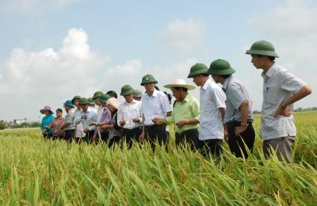 Kiến Xương – Thái Bình hướng đến phát triển Nông thôn mới nâng cao