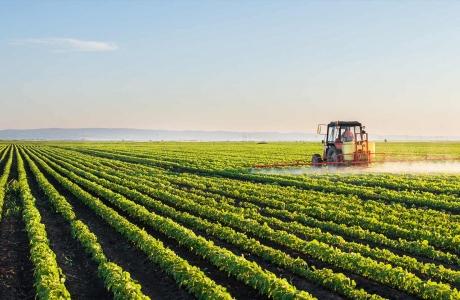 LHQ kêu gọi chuyển đổi hệ thống lương thực cho mục tiêu phát triển bền vững