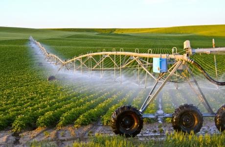 Mô hình nông nghiệp tái sinh: Giải pháp thiết thực cho phát triển bền vững
