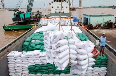 Xuất khẩu gạo sang các thị trường chủ đạo tăng trưởng tốt
