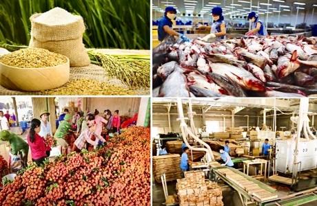 Chuỗi cung ứng nông nghiệp trong đại dịch Covid - 19