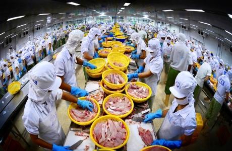 Hiệp định thương mại tự do Việt Nam - Liên minh Kinh tế Á - Âu giai đoạn 2016 - 2020: Thành tựu và những vấn đề đặt ra
